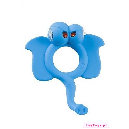 Pierścień Niebieski słoń